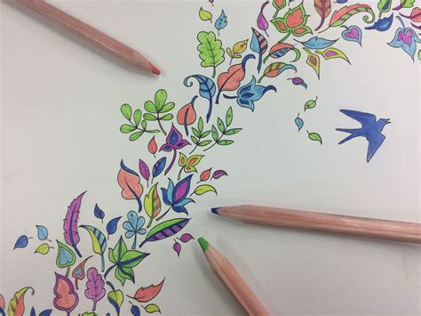 My Craft St7780 Colouring Book Enchanted Forest colouring in for adults de stress with this new craze it s not just for cass