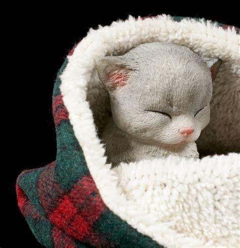 Decke Katze by Katzen Figur Schlafend In Decke Eingewickelt Www Figuren