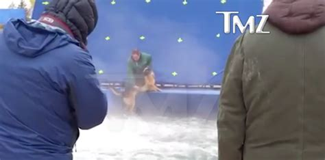a s purpose animal abuse a s purpose draws accusations of animal cruelty as disturbing on set footage
