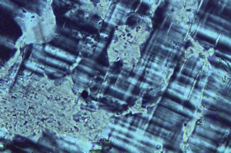 microcline thin section perthite