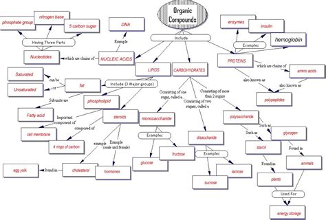 biologically important organic molecules original document concept map organic compounds