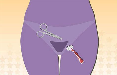 pubic hair trimmed best technique to remove pubic hair with hair removal