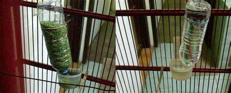 Tempat Pakan Burung Koloni cara mudah membuat tempat pakan dan minum burung otomatis