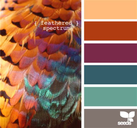 copper color combinations color palette generator on tumblr