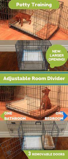 indoor dog bathroom solutions 25 best ideas about indoor dog potty on pinterest dog