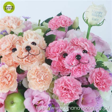imagenes de flores con ositos simulando ositos de peluche mascotas florales ideas y
