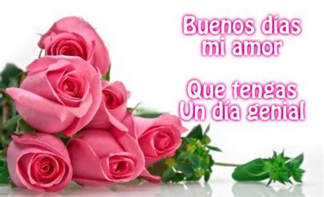 imagenes de rosas violetas con frases las mejores im 225 genes de flores con frases de buenos d 237 as