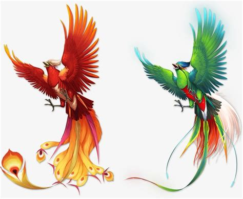 phoenix color pattern color phoenix birds png and psd