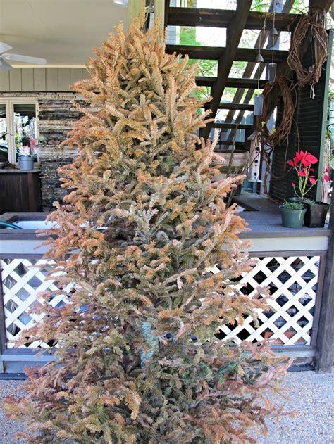christmas tree suet log feeder creative birding