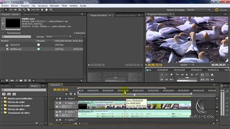 youtube tutorial adobe premiere pro cs5 tutorial adobe premiere pro cs5 tecnicas de edicion