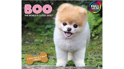 cutest in the world 2016 mead 174 2016 boo the world s cutest year in a box 174 calendar lmb252 16 fivestar