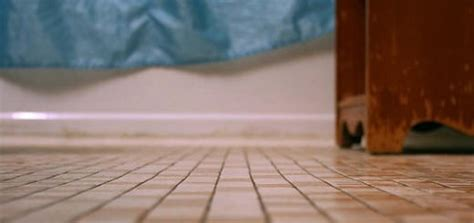 how to remove hair from bathroom floor how to remove pet hair from upholstery vacuum companion