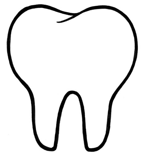 picture of the tooth template polished hygiene