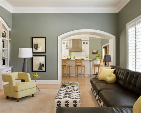 sage green room sage green paint living room design ideas pictures