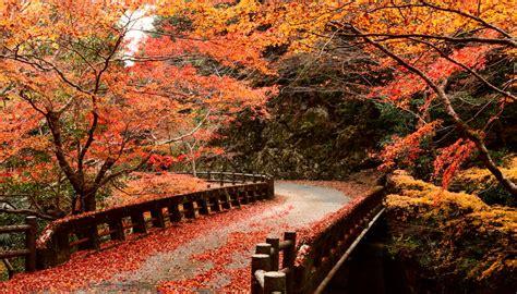 camino foto shikoku el quot camino de santiago quot japon 233 s orientaciones