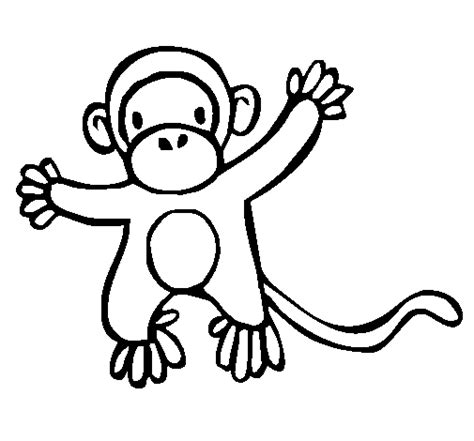 imagenes de monos faciles para dibujar desenhos para colorir macacos chipanz 233 s e gorilas