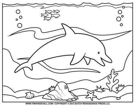 dolphin coloring book free dolphin coloring page coloring pages