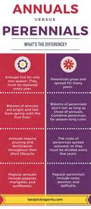 Patio Door Shutters Difference Between Annuals And Perennials Infographic