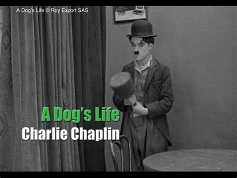 charlie chaplin biography history channel charlie chaplin a dog s life hand scene quot puppet quot gag