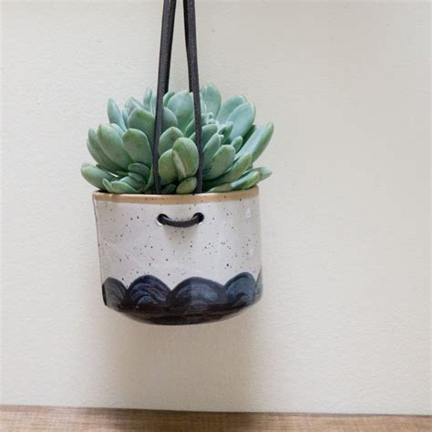 succulent wall planter 1000 ideas about succulent wall planter on