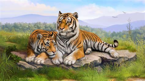 wallpaper laptop harimau harimau hd wallpaper desktop lebar definisi tinggi