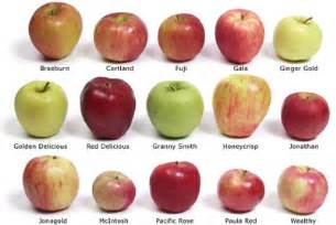 Love red apples so i would eat jonathan i think every one should