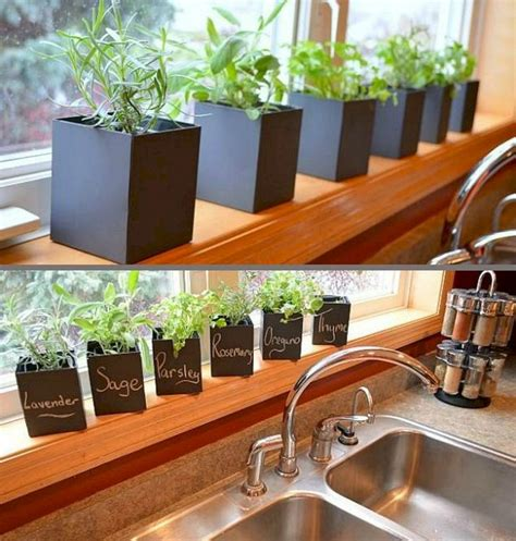 best indoor herb garden the best indoor herb garden ideas for your home and