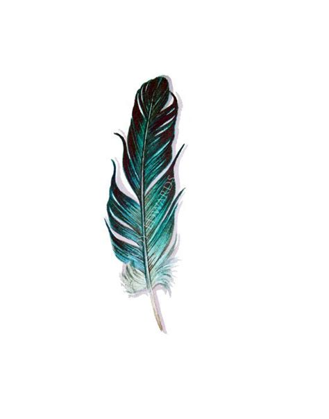 aquamarine feather painting original watercolor feathers bird feathers and feather tattoos