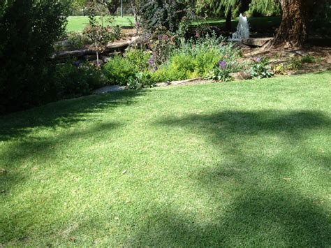 Lawn Care marne valley turf amp instant lawn supplies