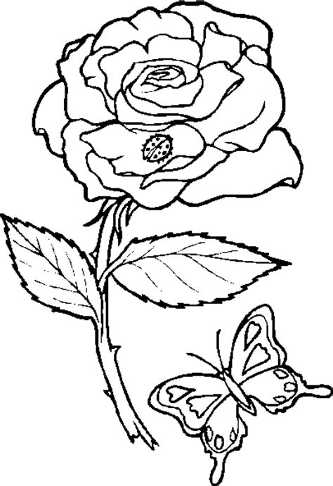 coloring pictures of butterflies and ladybugs hearts and roses coloring pages rose coloring image