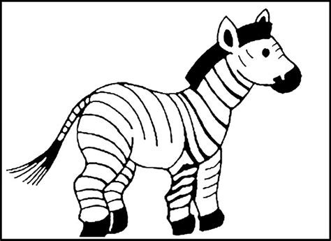 blank zebra coloring page 40 zebra templates free psd vector eps png format