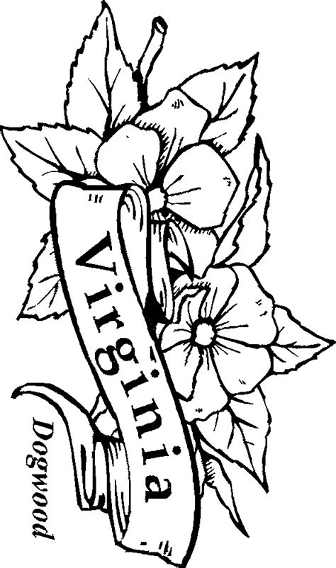coloring page of dogwood flowers 50 state flowers coloring pages for kids