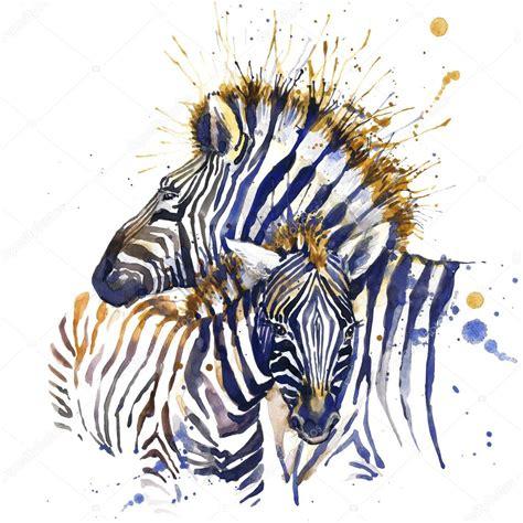 picture illustration zebra t shirt graphics zebra illustration with splash