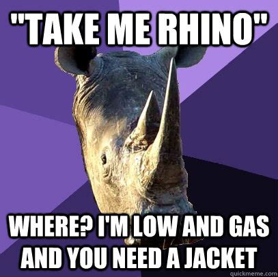 Rhino Memes - quot take me rhino quot where i m low and gas and you need a