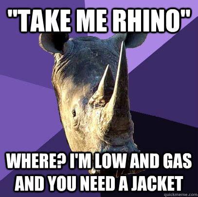 Rhino Memes - rhino memes 28 images western black rhino memes