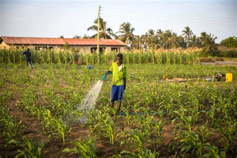 Agricultural Finance From Crops To Land Water And Ebook E Book farming on the doorstep iwmi