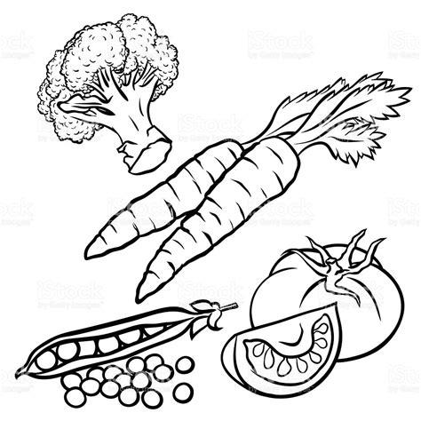 k y vegetables vegetables illustration for coloring book design stock