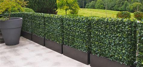 Terrasse Sichtschutz Pflanzen 3600 by K 252 Nstliche Hecke Sichtschutz K Nstliche Hecke Sichtschutz
