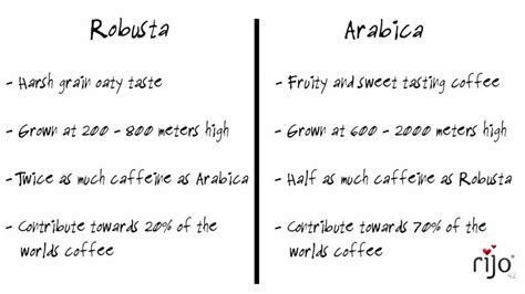 rijo42   Difference Between Robusta and Arabica   Commercial Coffee Machines   YouTube