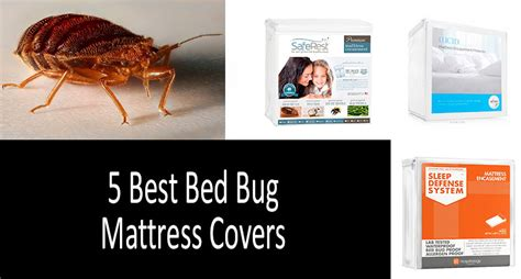 top   bed bug mattress covers protectors review