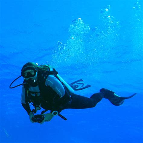 dive sport scuba diving information and equipment