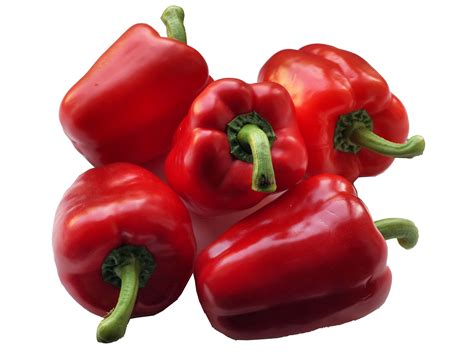 Chilli Plant Diseases - capsicum bell pepper cayenne pepper chili pepper chilli pepper green pepper jalapeno