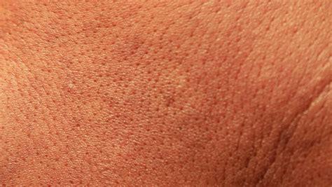 texture of human skin human skin texture stock footage