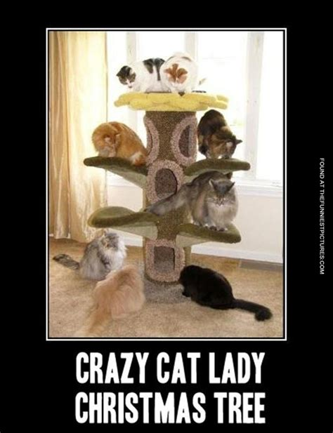 Funny Cat Lady Memes - crazy cat lady christmas tree funniest pictures