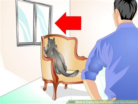 how to a to not jump on furniture how to a cat not to jump on your furniture 11 steps