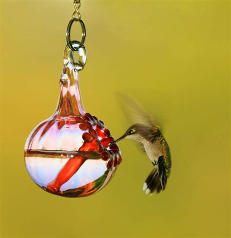 hummingbird feeders here s a painted blown glass hummin