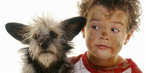 dogs that are with children who made the mess or dogs