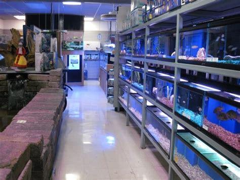 aquatic critter inc pet stores nashville tn yelp
