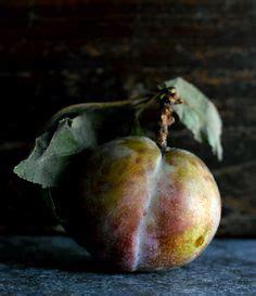 amy neunsinger photography on pinterest food photography still life