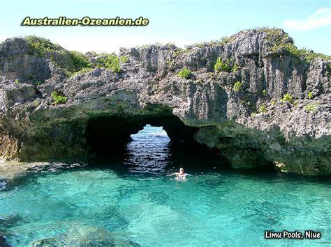 niue dive niue island swim snorkel and dive